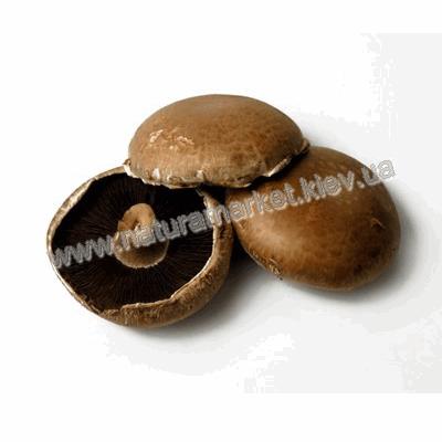 Купить грибы Портoбеллo в Киеве