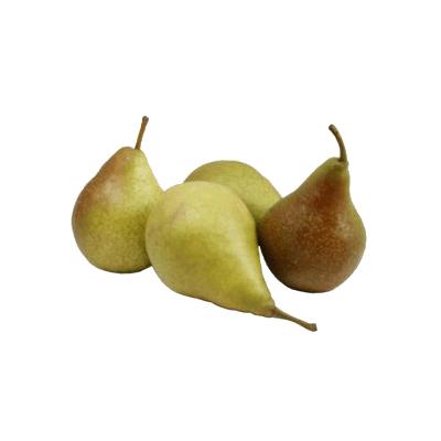 Купить грушу Бере Дюрандо в Киеве