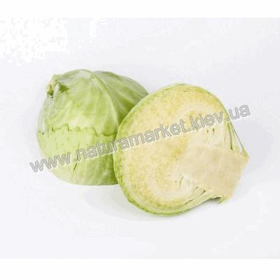 Купить капусту Белокочанную