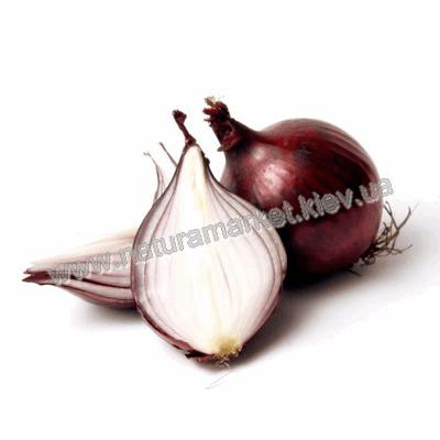 Купить лук красный в Киеве картинка1