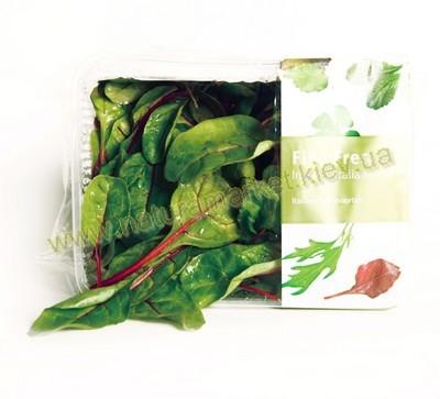 Купить салат Мангольд в Киеве