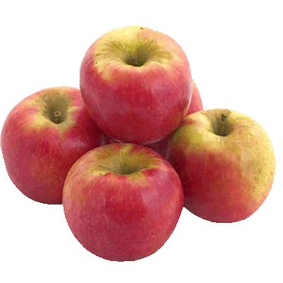 Купить яблоко Пинк Леди в Киеве
