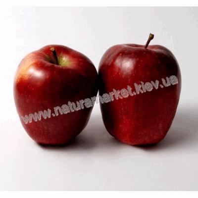 Купить яблоко Ред чиф в Киеве