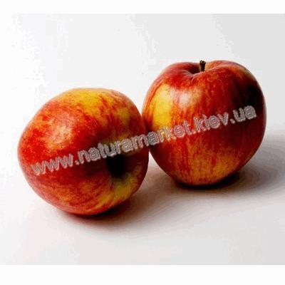 Купить яблоко Роял Гала в Киеве