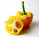 Купить перец желтый в Киеве