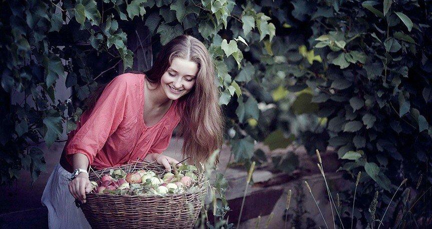 Основы органически чистого выращивания яблок