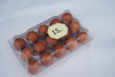 Яйца куриные , уп 15 шт
