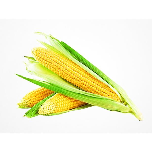 Кукуруза сахарная /шт